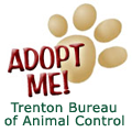 Click to visit Trenton Bureau of Animal Control
